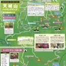 天城山ハイキングマップ 八丁池コース