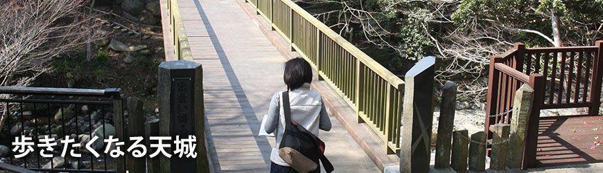 白壁荘の女将マップ 歩きたくなる天城